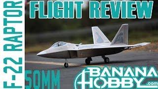 Download F-22 Raptor 50mm BlitzRCWorks   Flight Review   EDF Fighter Jet Video