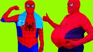 Download Spider Girl vs Fat Spiderman Superheroes in Real Life Video