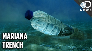 Download How Did The Deepest Part Of The Ocean Get So Polluted? Video