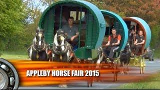 Download Appleby Horse Fair 2015 DVD Trailer - Caballo Video
