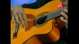 Download Marcelo Dellamea - (Kilometro 11) Fiesta Nacional del Chamamé 2012 Video