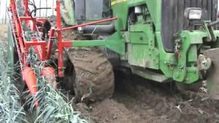 Download leek and celery harvester LAUWERS Video