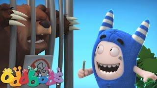 Download Oddbods | Zoo Video