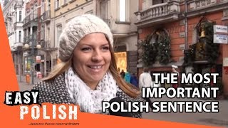 Download Easy Polish 1 - The most important Polish sentence Video