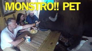 Download ELES TEM UM MONSTRO DENTRO DE CASA! | RICHARD RASMUSSEN Video