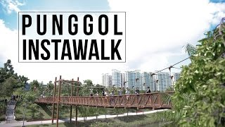Download Punggol #InstaWalk With MNDSingapore, HDB & NParks! Video
