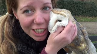 Download Going on a bike ride with my barn owl Video