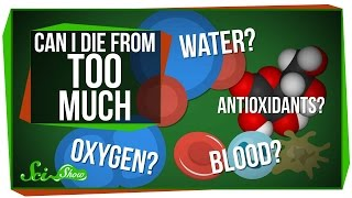 Download Can I Die From Too Much Water? Blood? Oxygen? Video