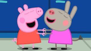 Download Peppa Pig Świnka Peppa po Polsku | Przyjaciółka Świnki Peppy Delfina Osiołek | Bajki Po Polsku Video