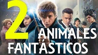 Download ¿De qué tratara Animales Fantásticos 2? Video