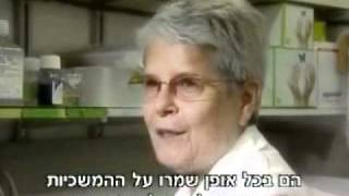 Download מקורם של הפלשתינאים מעם ישראל Video