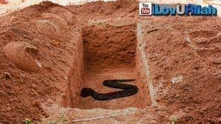 Download Snake In The Grave ᴴᴰ | *True Story* Video