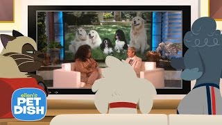 Download Ellen's Pet Dish with Oprah Video