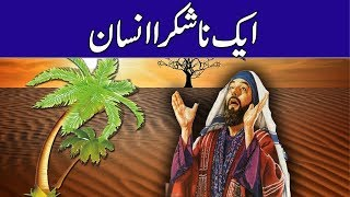 Download Na Shukra Insan    a Ungrateful person    Moral Story    Urdu/Hindi Rohail Voice Video