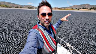 Download Why Are 96,000,000 Black Balls on This Reservoir? Video
