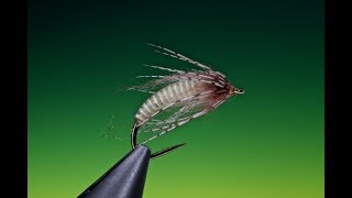 Download Tying an Antron caddis pupa with Barry Ord Clarke Video