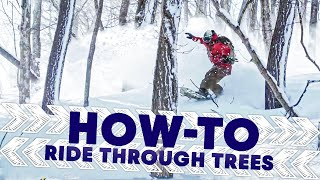 Download How To Ride Through The Trees | Shred Hacks Video