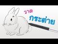 Download วิธีการวาดการ์ตูน กระต่าย Video