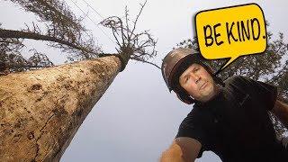 Download DECREPIT SNAG FELL -Tree Felling Scenarios Pt.3 Video