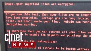 Download Nasty Petya ransomware spreading fast (CNET News) Video