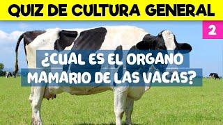 Download 18 PREGUNTAS DE CULTURA GENERAL PARA JUGAR CON LA FAMILIA - TRIVIAL DE CULTURA GENERAL Video