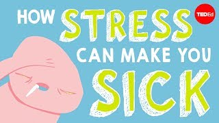 Download How stress affects your body - Sharon Horesh Bergquist Video