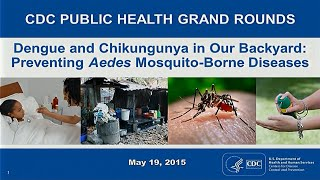 Download Dengue and Chikungunya in Our Backyard: Preventing Aedes Mosquito-Borne Diseases Video