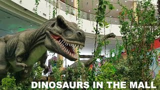 Download Spotted Dinosaurs in a mall - anything can happen in Dubai Video