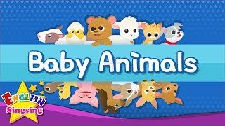 Download Kids vocabulary - Baby Animals - Learn English for kids - English educational video Video