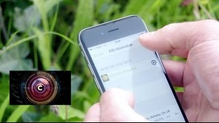 Download The app that discovers edible weeds - BBC Click Video