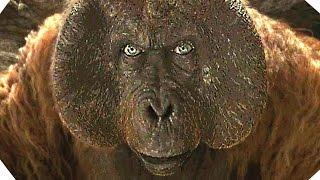 Download Vidéo 360° - Mowgli dans le temple des singes- LE LIVRE DE LA JUNGLE Video