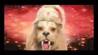 Download Narashimma Video