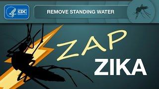 Download Zap Zika: Remove Standing Water Video