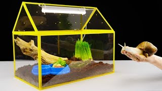 Download DIY Unusual Home for a Giant Snail Video