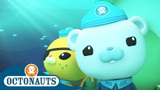 Download Octonauts - Whale Song | Cartoons for Kids | Underwater Sea Education Video