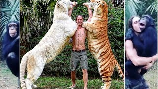 Download REAL TARZAN RAISED WITH TIGERS KODY ANTLE Video