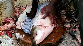 Download Amazing Cutting Fish   Fastest Rohu Fish Cutting   Big Carp Clean And Fillet Videos Video