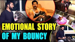 Download Part 3: How My Dog Survived From Cancer !! Top 10 Movies Dr.Suresh Exclusive Interview Video