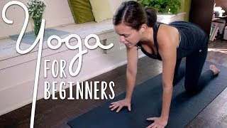 Download Yoga For Complete Beginners - 20 Minute Home Yoga Workout! Video
