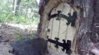 Download TREE STUMP HOUSE REDNECK.LIFE PRODUCTIONS Video