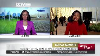 Download Delegates at COP22 react to Trump win Video