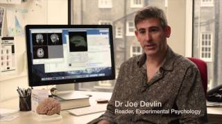 Download UCL Psychology: aligning research with practice Video