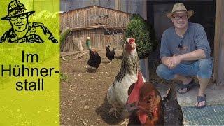 Download Der Selbstversorger-Hühnerstall Video