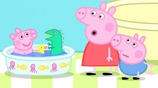 Download Peppa Pig Official Channel |Peppa Pig's Best Season 4 Moments Video