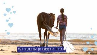 Download Afscheid van Bella nemen -pony verkopen- * Hart voor Paarden * Video