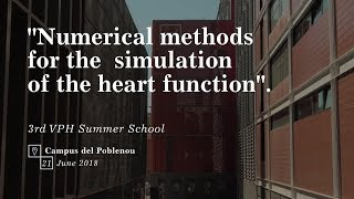 Download Numerical methods for the simulation of the heart function Video