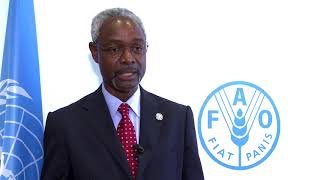 Download Remarks by Ibrahim Thiaw, UN Special Adviser for the Sahel Video