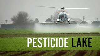 Download Pesticide Lake - The Poisoning of the Workers of Apopka, Florida Video