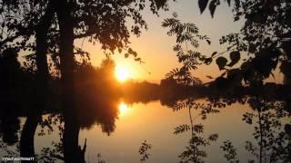 Download Jaak Joala - Suveöö Video
