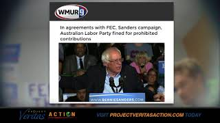 Download BERNIE SANDERS PAYS FINE - FEC Credits PVA for Exposing Foreign Gov't Election Meddling Video